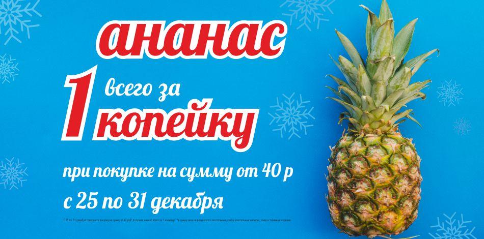 domachni-21